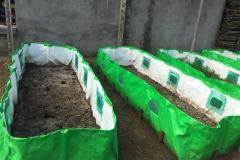 Organic Input Preparations